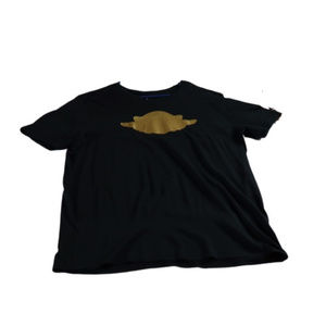 Jordan Men's Golden Wings T Shirt